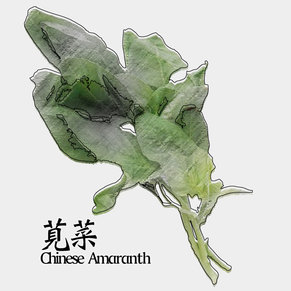 gm-chinese-amaranth