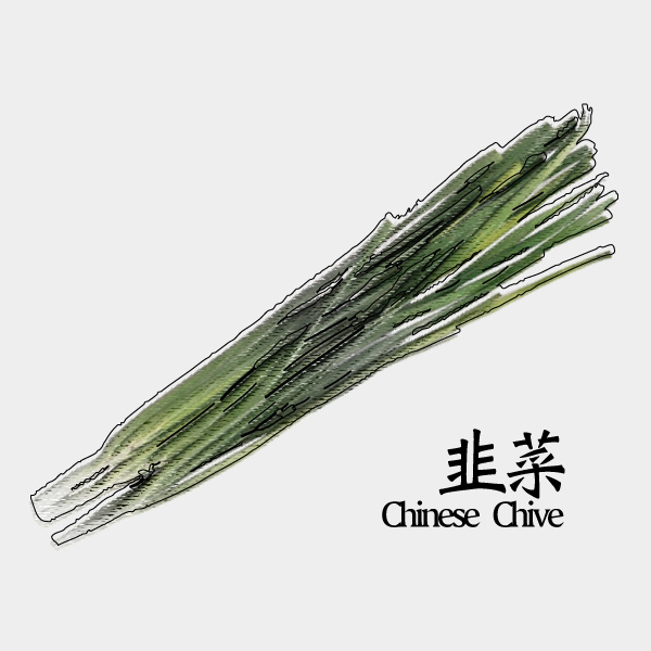 gm-chinese-chive
