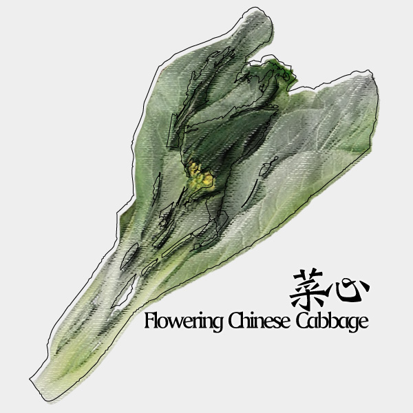 gm-flowering-chinese-cabbage