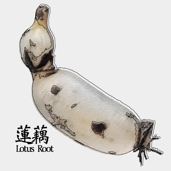 gm-lotus-root
