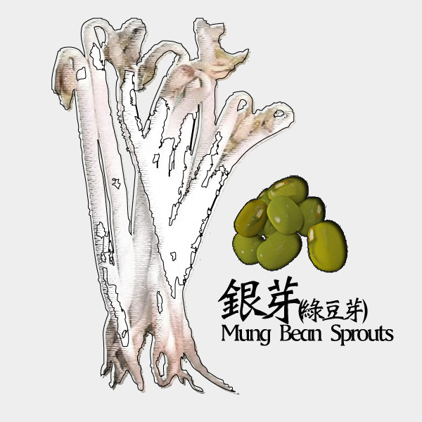 gm-mung-bean-sprouts