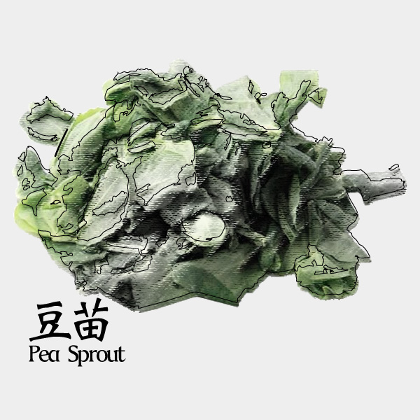 gm-pea-sprout