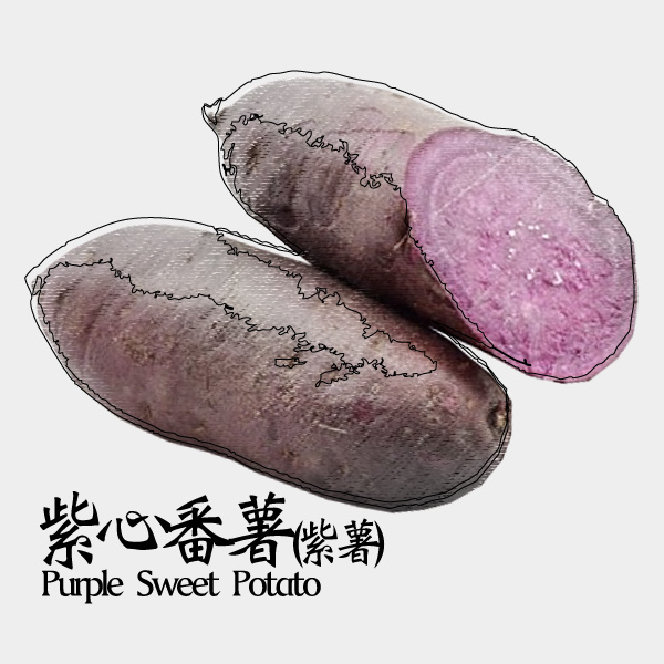 gm-purple-sweet-potato