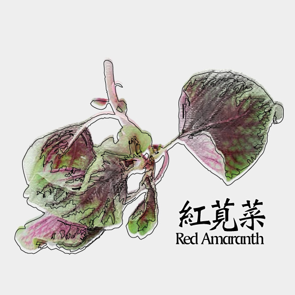 gm-red-amaranth