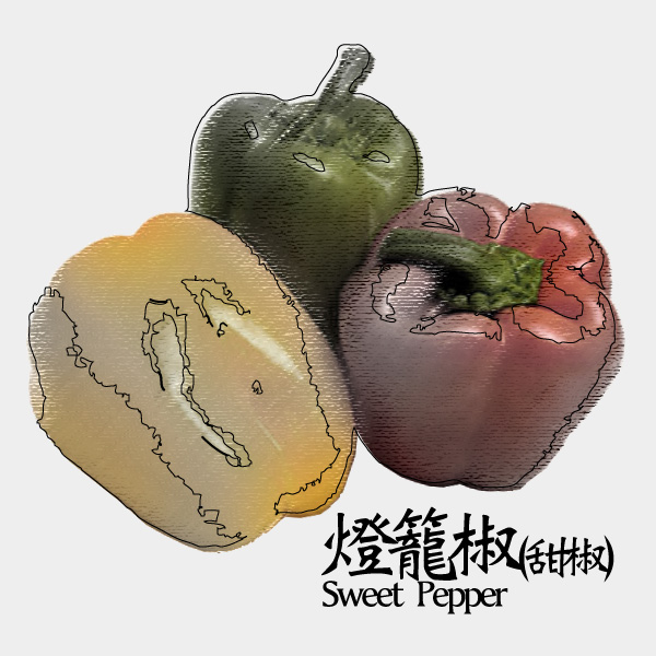 gm-sweet-pepper
