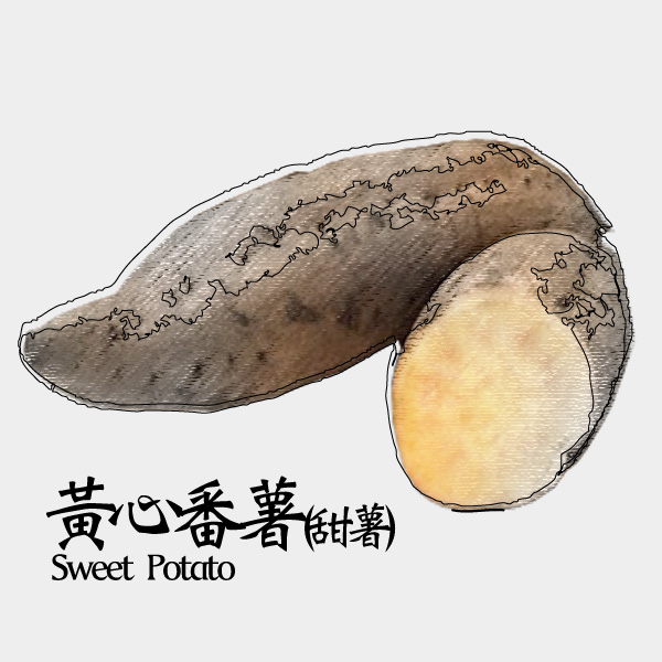 gm-sweet-potato-