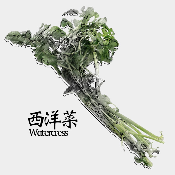 gm-watercress