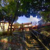 taipo-photo-trip11